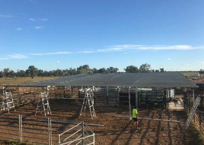 Cattle Yard Shelter
